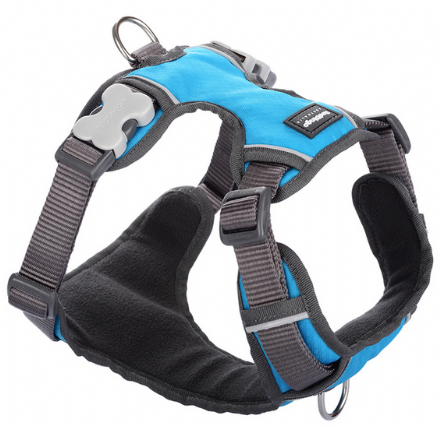 Red Dingo Padded Dog Harness Turquoise